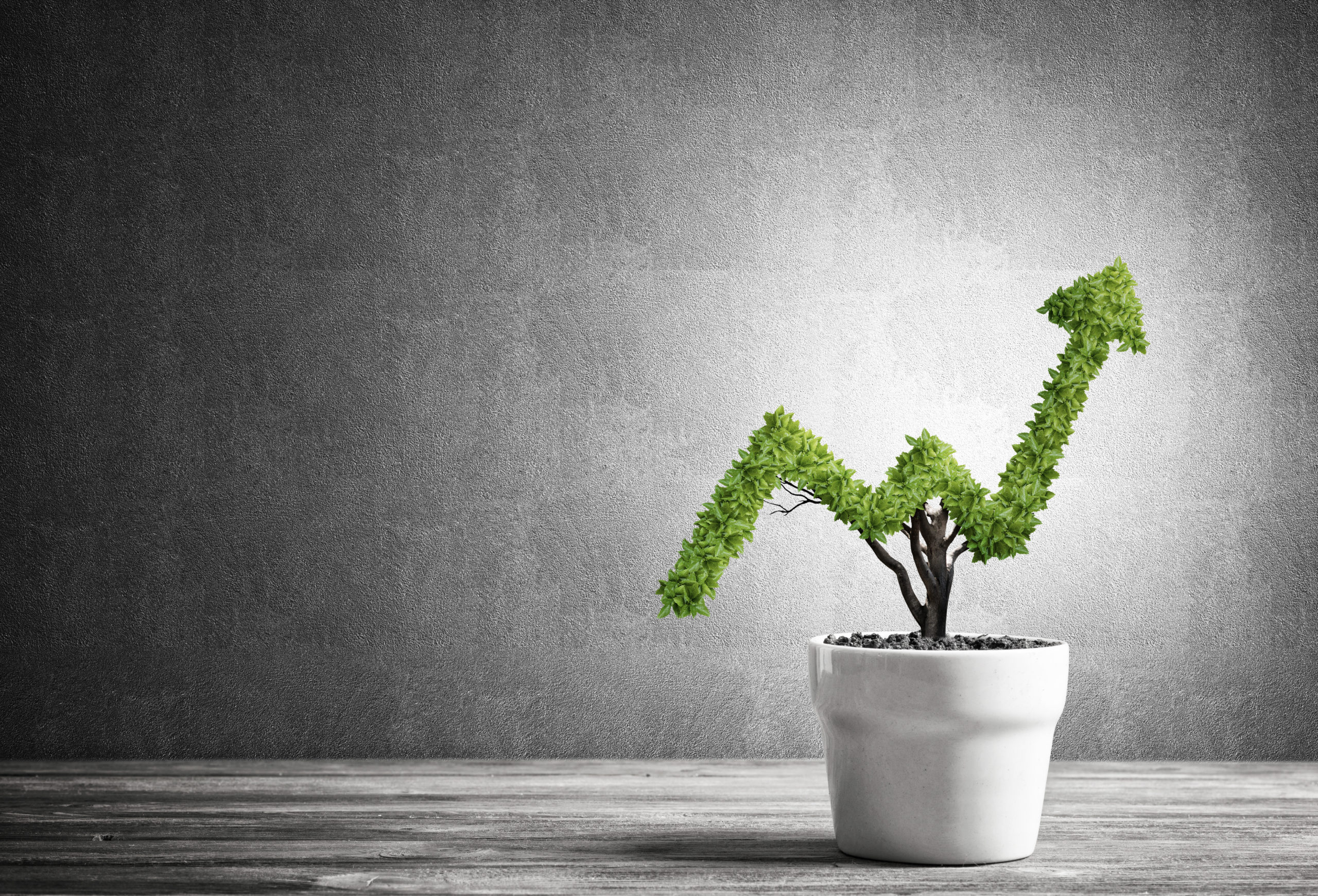Plant that is growing in an upward arrow shape showing growth in profits.